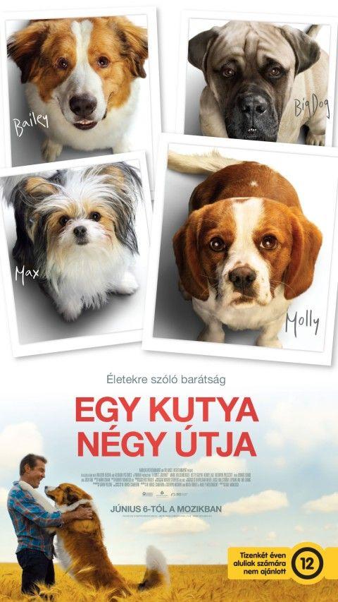  Egy kutya négy útja (12)